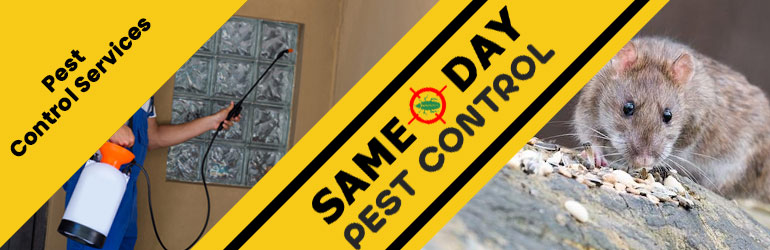 Pest Control Bombah Point