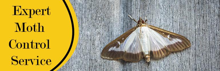 Expert Moth Control